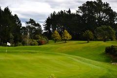 Terrain de golf du Nouvelle-Zélande photo libre de droits