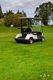 Terrain de golf du Nouvelle-Zélande et kart de golfeurs photographie stock libre de droits