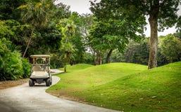 Terrain de golf et golfcart photographie stock libre de droits