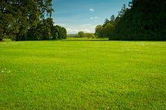 Terrain de golf idyllique d'été Images stock