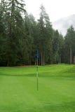 Terrain de golf jouant au golf images libres de droits