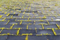 Terrain de jeu avec les tapis en caoutchouc et le x28 ; panels& x29 ; pour la sécurité Long-abandone Photos libres de droits