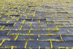 Terrain de jeu avec les tapis en caoutchouc (panneaux) pour la sécurité Long-abandone Photographie stock libre de droits