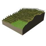 Terrain model tree plantation Stock Photos