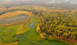 Terrain with river in autumn, top view Stock Photography