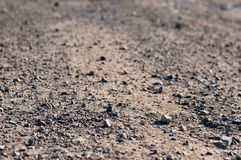 Terrain road with small rocks on the ground Stock Image