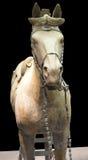 Terrakotta-Kriegers-Pferd von Xian Stockfotos