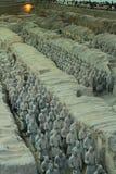 Terrakotta-Soldaten XI im ` ein Porzellan stockfotos