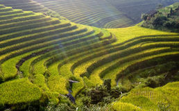 terrance της Κίνας