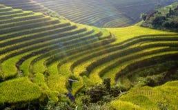 Terrance en China Foto de archivo
