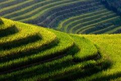 Terrance en China Imagenes de archivo