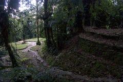 Terraço, Ciudad Perdida (cidade perdida), Colômbia Imagens de Stock