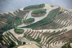 Terraços do arroz de Longji, província de Guangxi Imagens de Stock