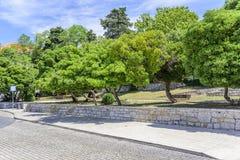 Terraplén de la ciudad de Zadar foto de archivo