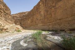 Terraplén de Túnez Imagen de archivo libre de regalías