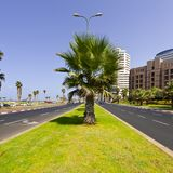 Terraplén de Tel Aviv foto de archivo