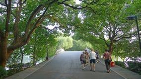 Terraplén del lago del oeste, Su con el árbol de alcanfor Fotografía de archivo