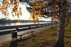 Terraplén del otoño Imágenes de archivo libres de regalías