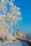 Terraplén ity del ¡de Ð en el día soleado de congelación Fotografía de archivo
