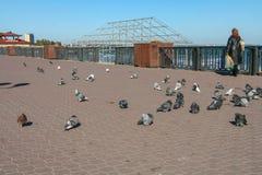 Terraplenagem na cidade de Feodosiya Fotografia de Stock Royalty Free