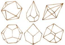 Terrarium geométrico para plantas carnudas e cacto, potenciômetros da garatuja e frascos de vidro Fotos de Stock
