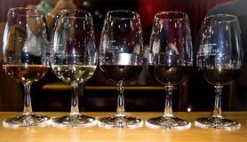 Terras do vinho do constantia de Groot Imagens de Stock