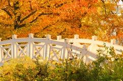 Terras inglesas da ponte do branco de Woerlitz Foto de Stock