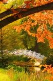 Terras inglesas da ponte do branco de Woerlitz Imagens de Stock Royalty Free