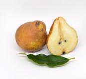 Terras isoladas na dieta de alimento branca fresca Fotos de Stock Royalty Free