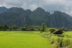 Terras verdes luxúrias Foto de Stock Royalty Free