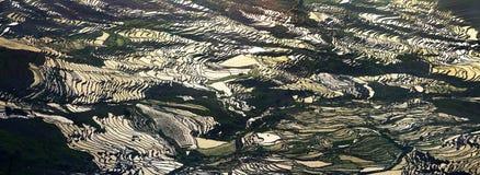 Terrass i resningsolskenet Arkivbild
