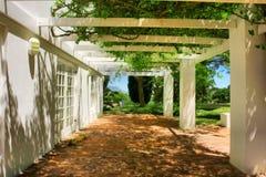 Terrass som täckas av druvan och murgrönaen Royaltyfria Bilder