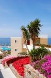 Terrasse avec des fleurs Photographie stock libre de droits