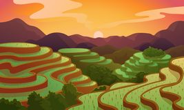 Terrasse chinoise de gisement de riz de paysage de vecteur