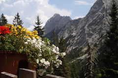 Terrasse de l'Autriche d'Alpes Photos libres de droits