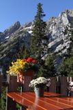Terrasse de l'Autriche d'Alpes Photographie stock