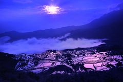 Terrasse de la Chine Yunnan Hani Images libres de droits