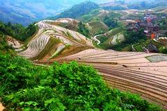 Terrasse de Longji, Guilin Images stock