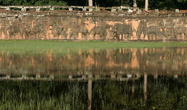Terrasse des éléphants Angkor, Siem Reap, Cambodge Photographie stock