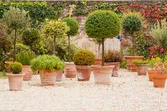Terrasse die met mediterrane bloempotten wordt verfraaid Royalty-vrije Stock Afbeelding