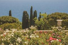 Terrasse du sud avec les roses de floraison, la vue de mer et les arbres à feuilles persistantes en parc photo stock