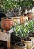 Terrasse en Provence Photographie stock libre de droits