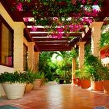 Terrasse mit Blumen Stockbilder
