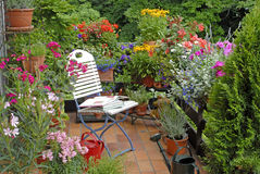 Terrasse mit Blumen Stockbild