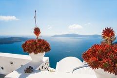 Terrasse mit den Blumen, die das Meer übersehen Lizenzfreies Stockbild