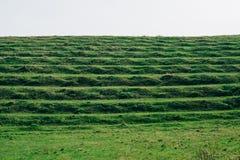 Terrasse sur des collines Images libres de droits
