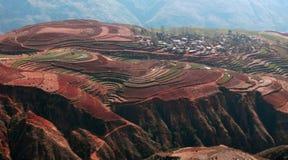 Terrassefeld in Asien Lizenzfreie Stockbilder