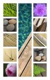 Terrassen en bloemen op een collage stock foto's