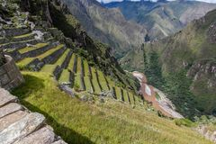 Terrassen en riviervaley dichtbij Machu Picchu stock fotografie