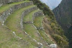 Terrassen in Machu Picchu in Peru Royalty-vrije Stock Foto